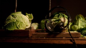 Some cabbages masquerading as DJ's. Banging.